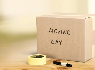Moving Services Cape Town