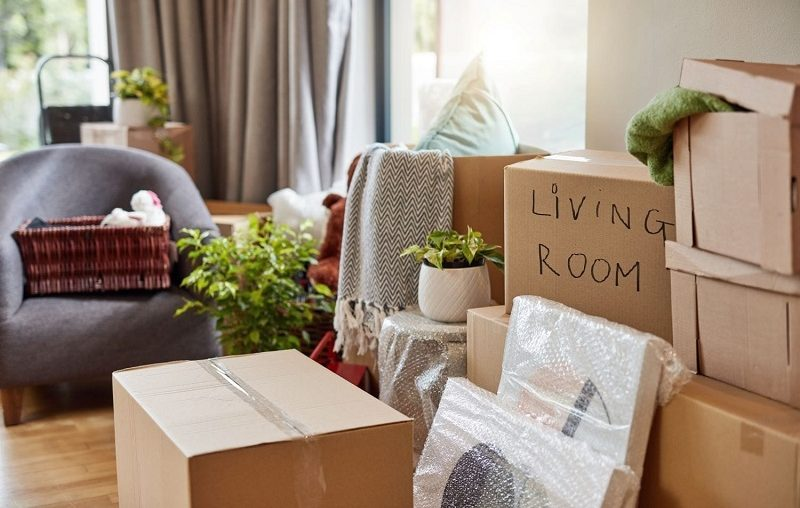Peter's Mini Removals – Your Trusted Mini Movers in Cape Town